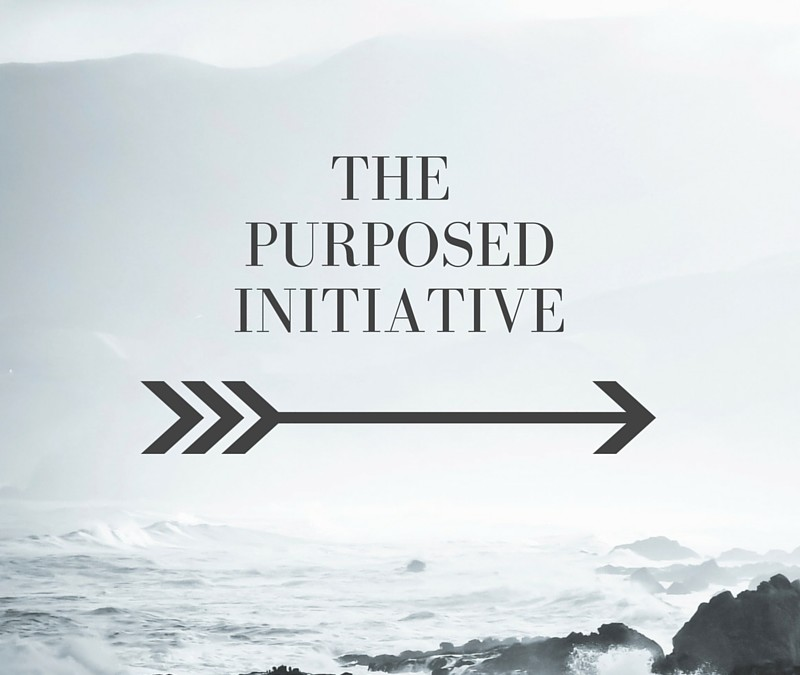 The Purposed Initiative
